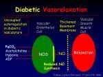 diabetic vasorelaxation