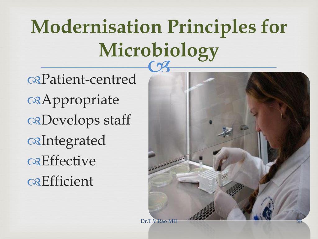Modernisation Principles for Microbiology