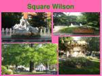 square wilson