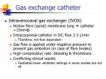 gas exchange catheter