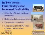 in two weeks four strategies for increased profitability