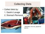 collecting diets