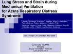 lung stress and strain during mechanical ventilation for acute respiratory distress syndrome