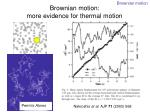 brownian motion more evidence for thermal motion