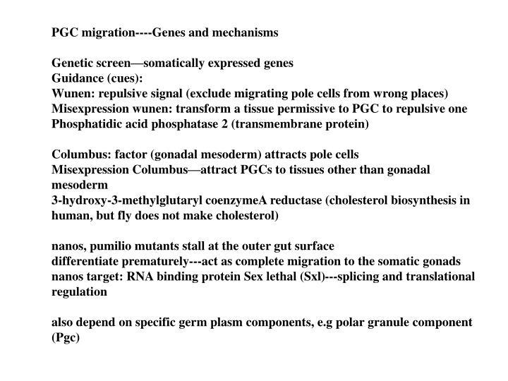 PGC migration----Genes and mechanisms