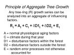 principle of aggregate tree growth