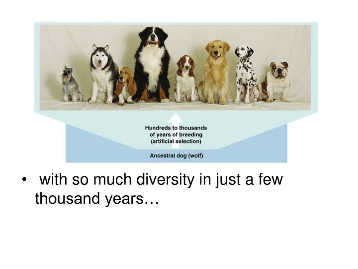 with so much diversity in just a few thousand years…