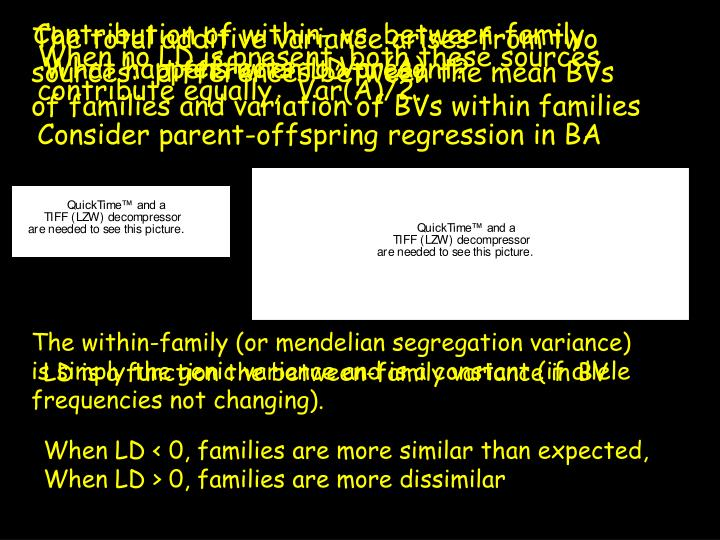 Contribution of within- vs. between-family