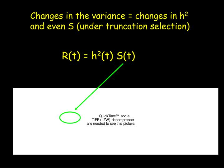 Changes in the variance = changes in h
