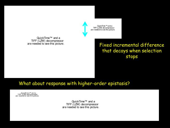 What about response with higher-order epistasis?
