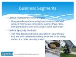 business segments1