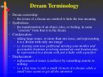 dream terminology