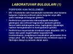 laboratuvar bulgulari 1