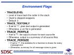 environment flags