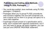 publishing and calling java methods using pl sql packages