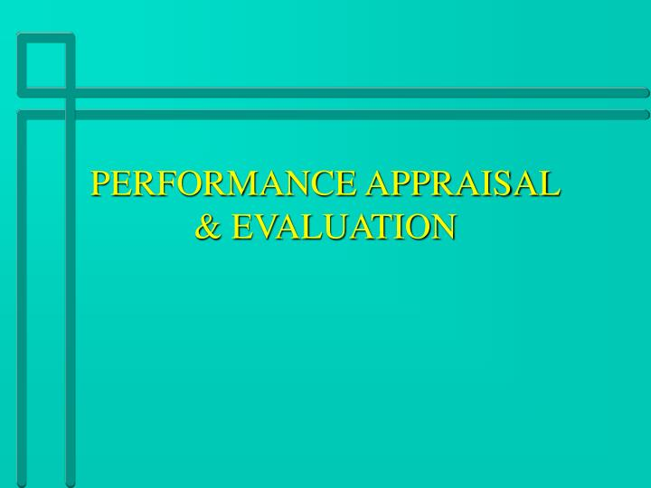 performance appraisal evaluation n.