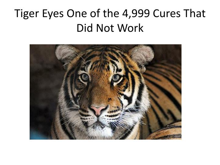 Tiger Eyes One of the 4,999 Cures That Did Not Work