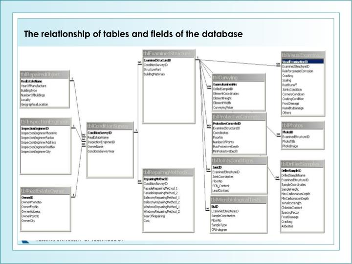 The relationship of tables and fields of the database