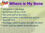 where is my bone