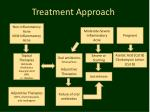 treatment approach