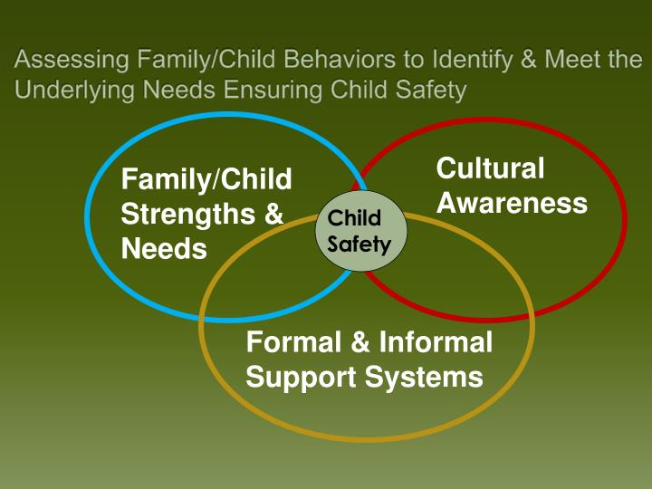 Assessing Family/Child Behaviors to Identify & Meet the Underlying Needs Ensuring Child Safety