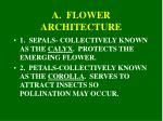 a flower architecture
