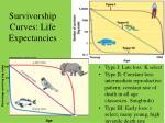 survivorship curves life expectancies