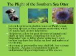 the plight of the southern sea otter