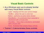 visual basic controls