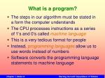 what is a program1