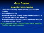 gaze control3