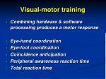 visual motor training