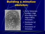 building a minutiae skeleton