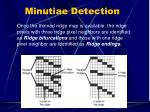 minutiae detection