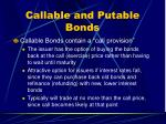 callable and putable bonds