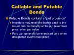 callable and putable bonds1
