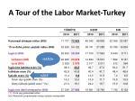 a tour of the labor market turkey