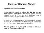 flows of workers turkey