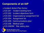 components of an iap
