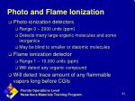 photo and flame ionization