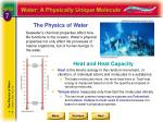 the physics of water