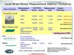 local strain stress measurement method tentative