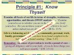 principle 1 know thyself