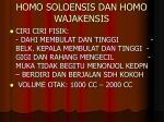 homo soloensis dan homo wajakensis