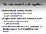 verb movement and negation