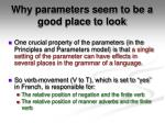 why parameters seem to be a good place to look