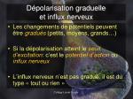 d polarisation graduelle et influx nerveux