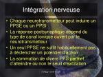 int gration nerveuse2