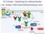 pi 3 kinase betydning for celleoverlevelse