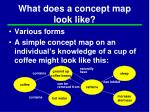 what does a concept map look like